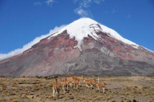 Andenlandschaft in Ecuador