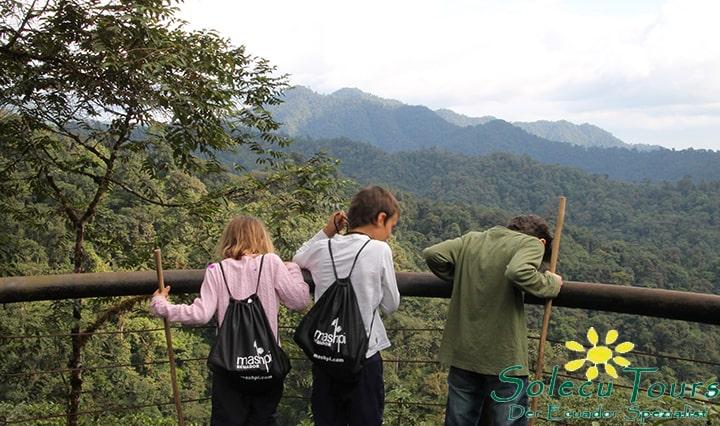 Aussichtspunkt im Nebelwald von Ecuador
