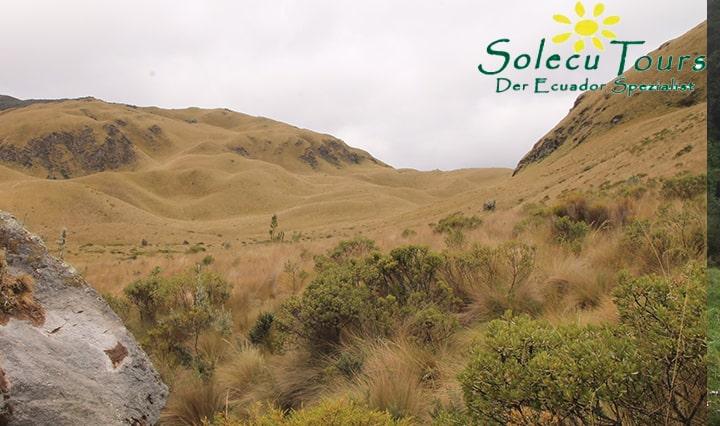Landschaft des Fuya Fuya Vulkans in Ecuador