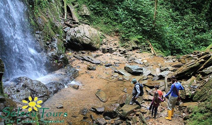 Wanderung zum Wasserfall nahe der Mashpi Lodge in Ecuador