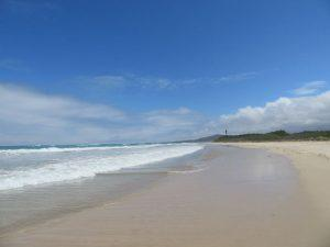 Strand beim Inselhopping auf Galapagos