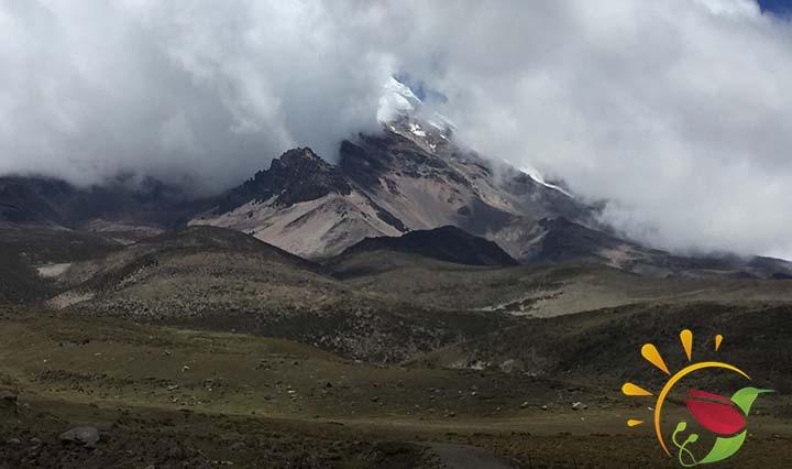 Der Chimborazo im Nebelschleier