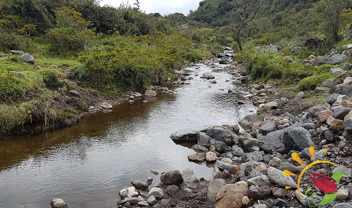 Bach und Natur im Naturreservat Santa Rita