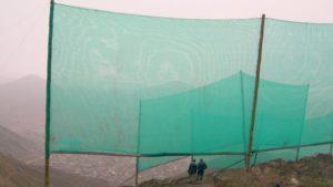 """Nebelfänger an den Hängen vor Lima """"fangen"""" Wasser auf, Peru"""