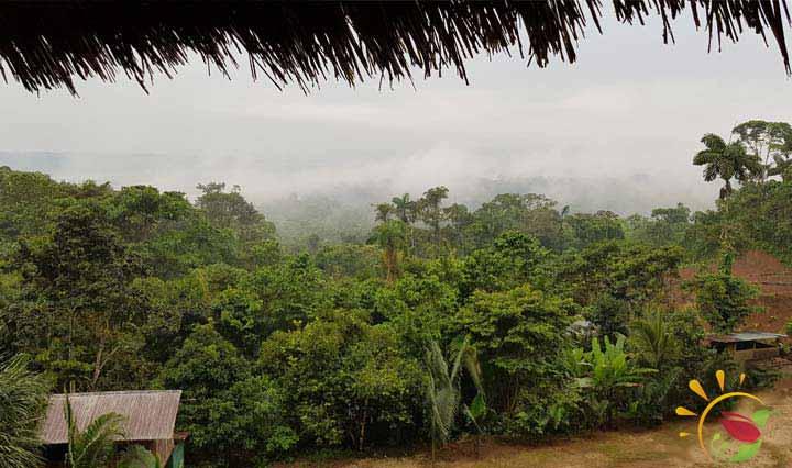 Aussicht von den Hütten beim Mirador Indichuris in Puyo