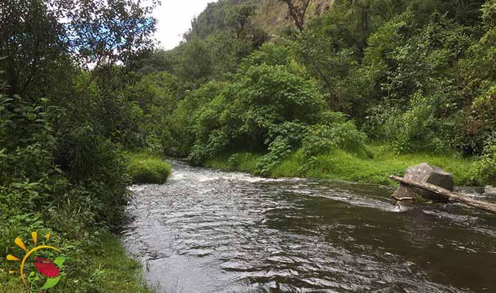 Fluss Pita Wasserfälle von Rumibosque