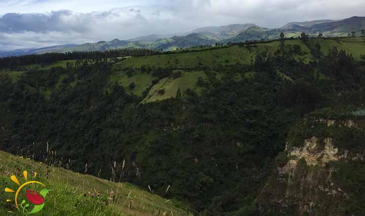 Schlucht bei den Cascadas de Rumibosque