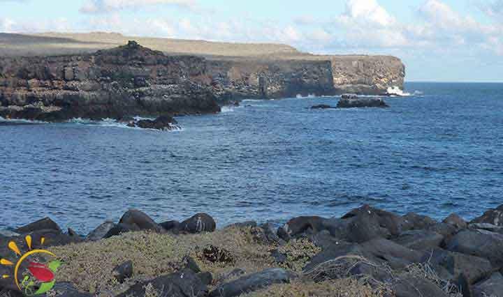 Klippen der Galapagos Insel Española
