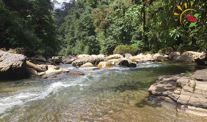 Rio Anzu Ecuador