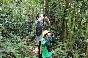 Projekt los Cedros Ecuador