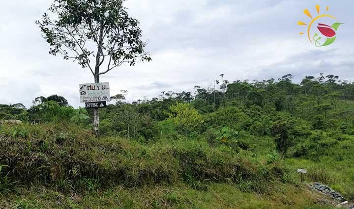 Reserva Muyu Semilla de Selva bei Puyo