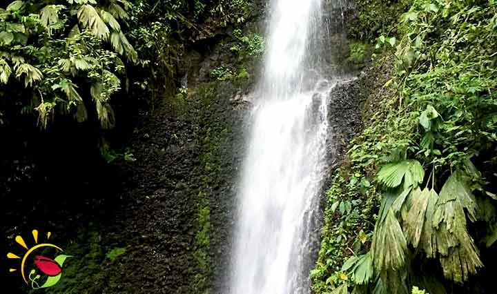 Wasserfall Naturaleza Viva bei Puyo, Ecuador