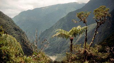 Nationalpark Rio Abiseo Peru
