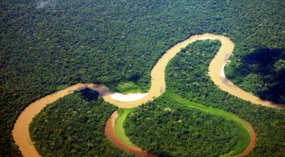 Flussschleife im Yasuní Nationalpark