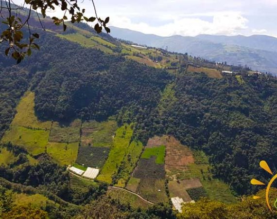 Aussicht Baños de Agua Santa